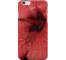 Jewel Drops iPhone Case/Skin