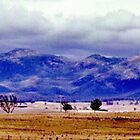 Part of the Great Dividing Range near Dalgety, NSW, Australia   by C J Lewis
