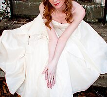 Alice's Dress by Nicole Remolde