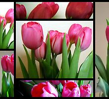 Tulips Stain Glass (204 views so far) by debbiedoda