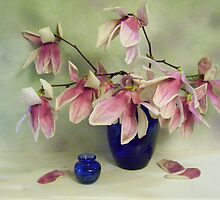 Spring  Magnolias in a Cobalt Vase by suzannem73