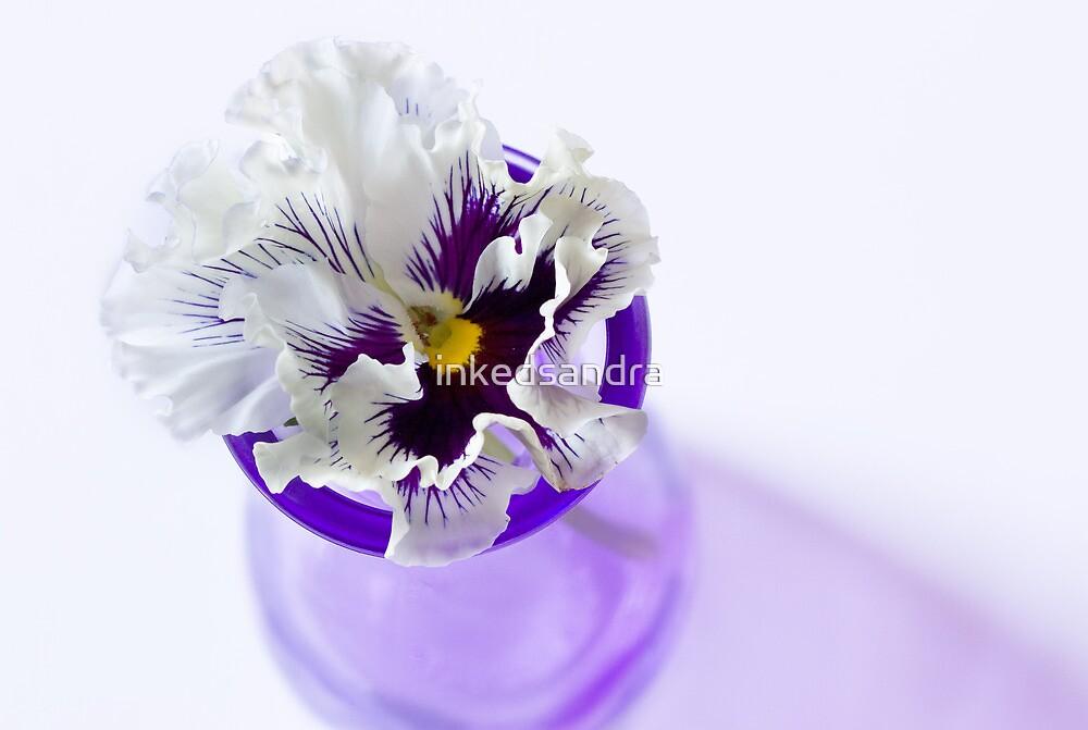 Pretty Purple Pansy by inkedsandra
