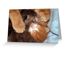 In Mommy's Arms Greeting Card