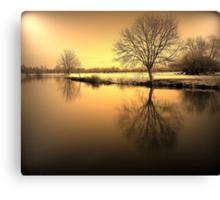 Golden Winter Glow Canvas Print