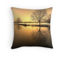Golden Winter Glow Throw Pillow