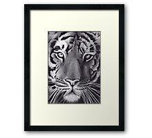 'Tiger - Up Close & Personal' Framed Print