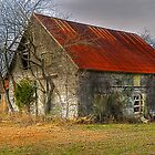 Red Roof Barn by Monte Morton