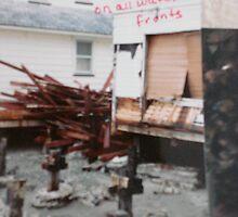 Storm Damage by Cathy Amendola