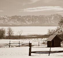 Garr Ranch Antelope Island Utah by Bellavista2