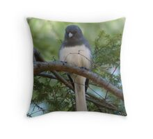 Welcome Spring! Throw Pillow