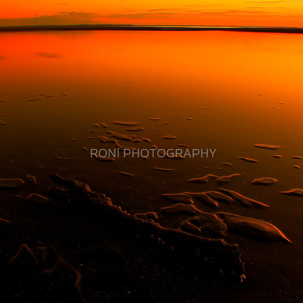 the sea never lonely by RONI PHOTOGRAPHY