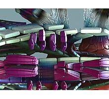 Seat Cushion Flotation Devices Photographic Print