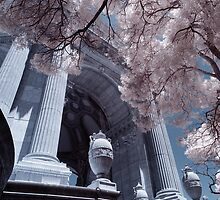 Rotunda, Palace of Fine Arts by Chris Tarling
