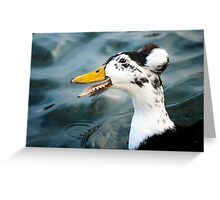 Laughing Duck Greeting Card
