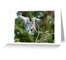 Heron Landing in the Rookery Greeting Card