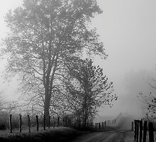 Solitary Road by Yvonne Powell