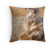 Meerkat.com Throw Pillow