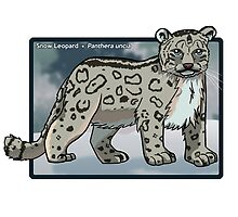 Snow Leopard by ArtWithPorpoise