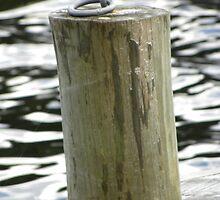 Docking Ring at the illicit still by Marcward