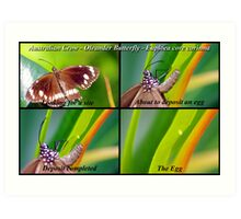 Butterfly... Let there be Life Art Print