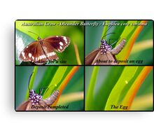 Butterfly... Let there be Life Canvas Print