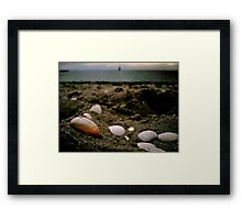 Sand. Shells. Distant Windsurfing. Framed Print