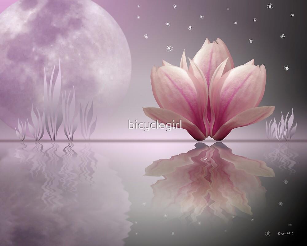Magnolia Dreams by bicyclegirl