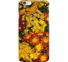 Abundance of Yellows, Reds and Oranges iPhone Case/Skin