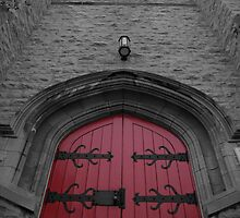 I See A Red Door by Fred  Mathews