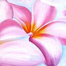 """Pink Frangipanis "" Acrylics by Taniakay"