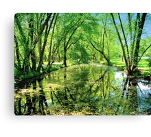 Reflections of a Summer Day  Canvas Print