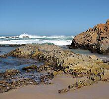 Ragged Coastline, Roaring 40's Wind by DianneLac