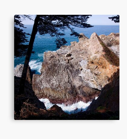 Nature Smiling on Us Canvas Print