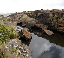 Tasmanian West Coastline at Granville Harbour by DianneLac