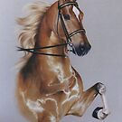 Saddlebred by Heidi Schwandt Garner