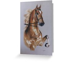 Saddlebred Greeting Card