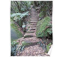 Stairways of the Blue Mountains 1 Poster
