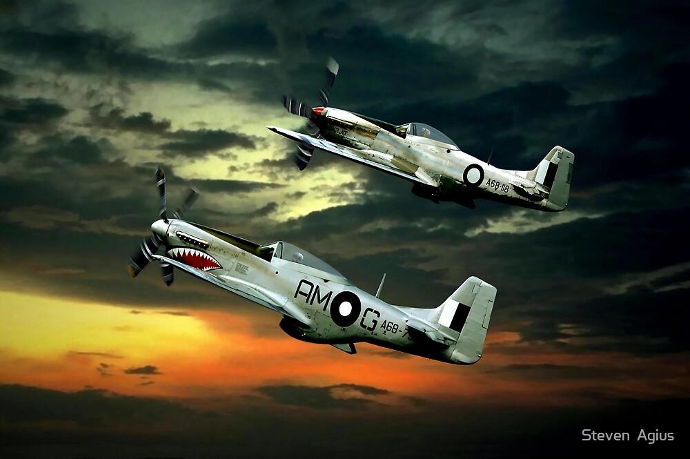 Mustangs in Flight by Steven  Agius
