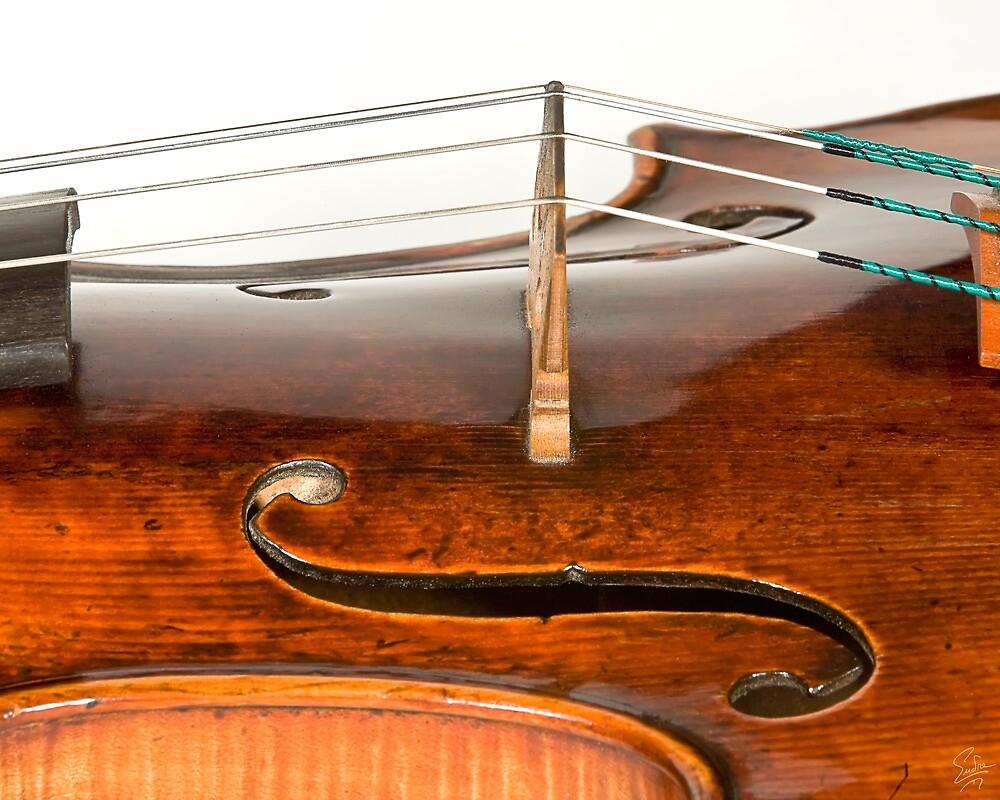 1728 Stradivarius - Detail by Endre