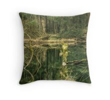 Reflections in a Green River Throw Pillow