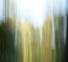 Abstract blur #1 by Murray Swift
