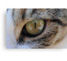 Cats Eye Macro Canvas Print