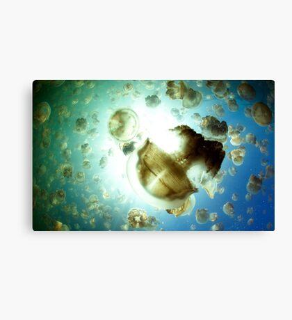 Jellyfish Army Canvas Print