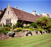 Oxford University lovely cottage garden by BronReid