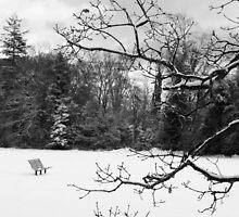 Snowbound by Robert Thornton