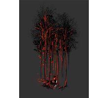 A Crimson Retaliation Photographic Print