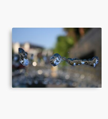 Flying Water Canvas Print