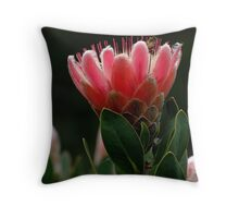'Afterglow' Throw Pillow