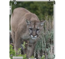 Cougar looking for dinner iPad Case/Skin