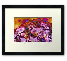 ~ All Colors of Love ~ Framed Print